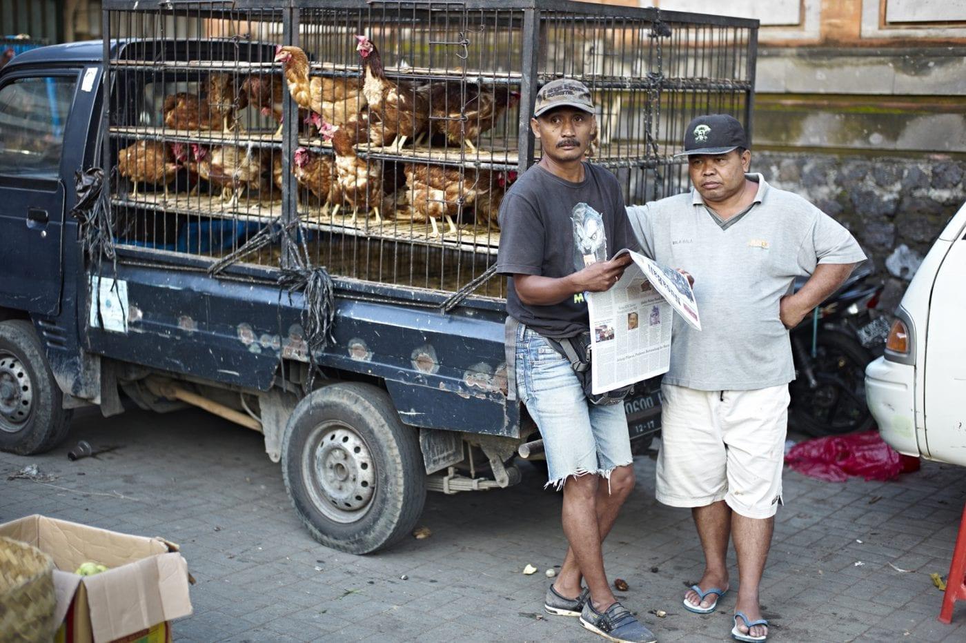 2013 in Bali – Markt Hühnertransporter