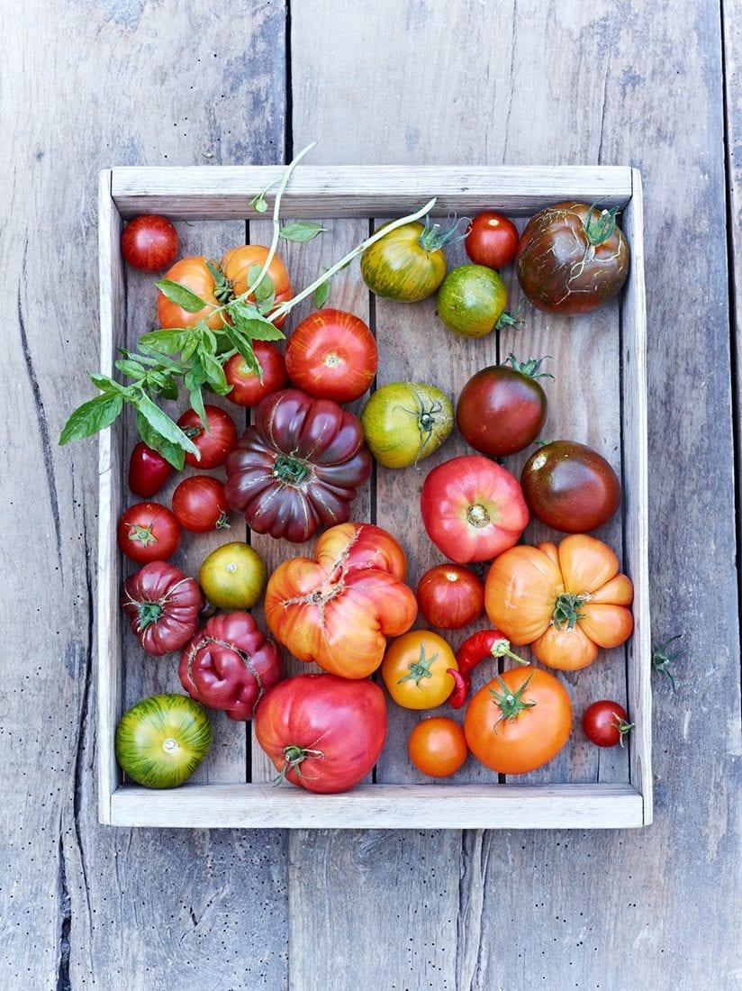 Meine Familie und ich– Tomatenkiste